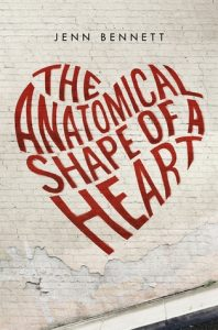The Anatomical Shape of a Heart