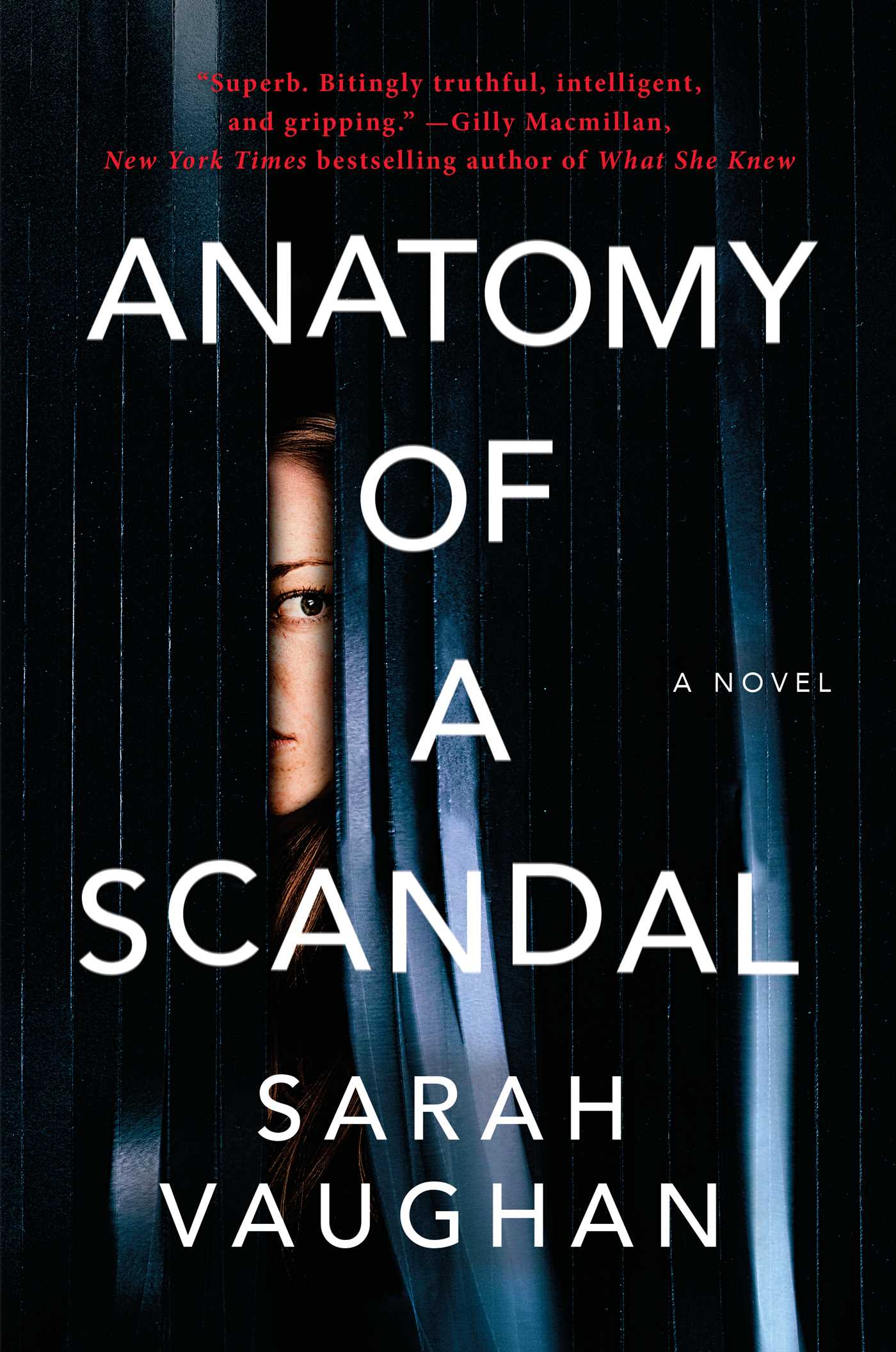 Excerpt: Anatomy of a Scandal