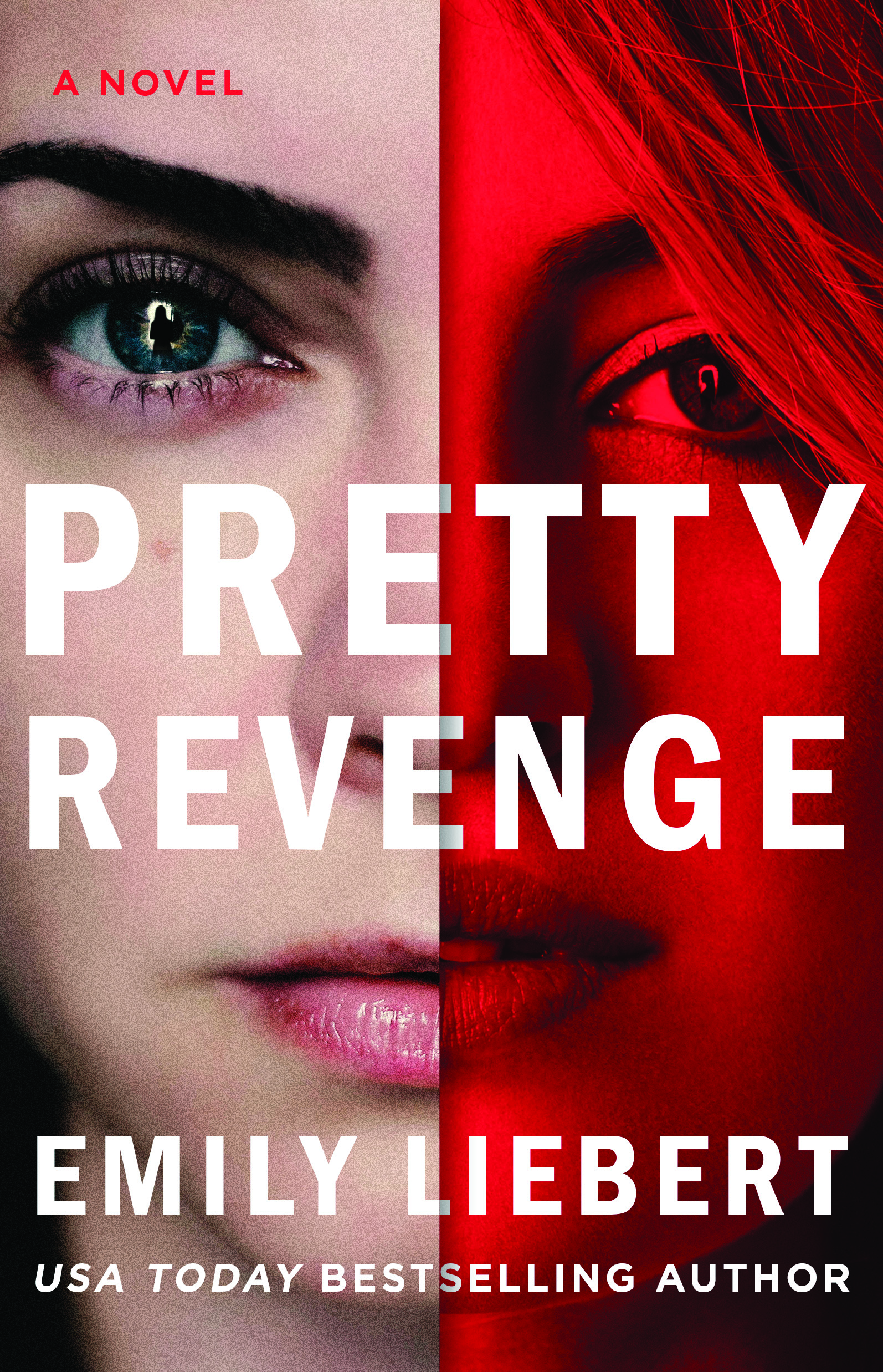 Cover Reveal + Prologue: PRETTY REVENGE by Emily Liebert